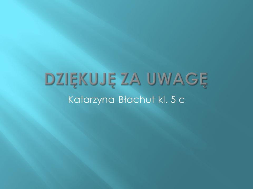 Katarzyna Błachut kl. 5 c