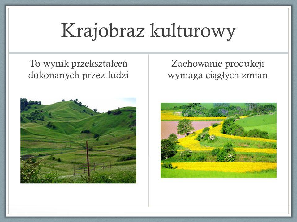 Krajobraz kulturowy To wynik przekszta ł ce ń dokonanych przez ludzi Zachowanie produkcji wymaga ci ą g ł ych zmian