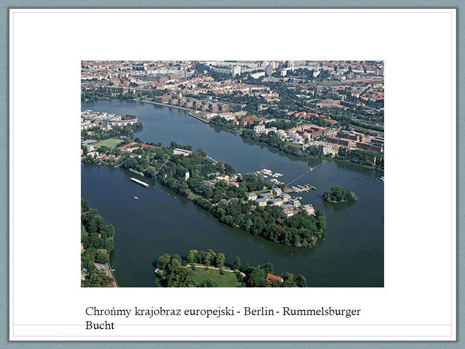 Chro ń my krajobraz europejski - Berlin - Rummelsburger Bucht