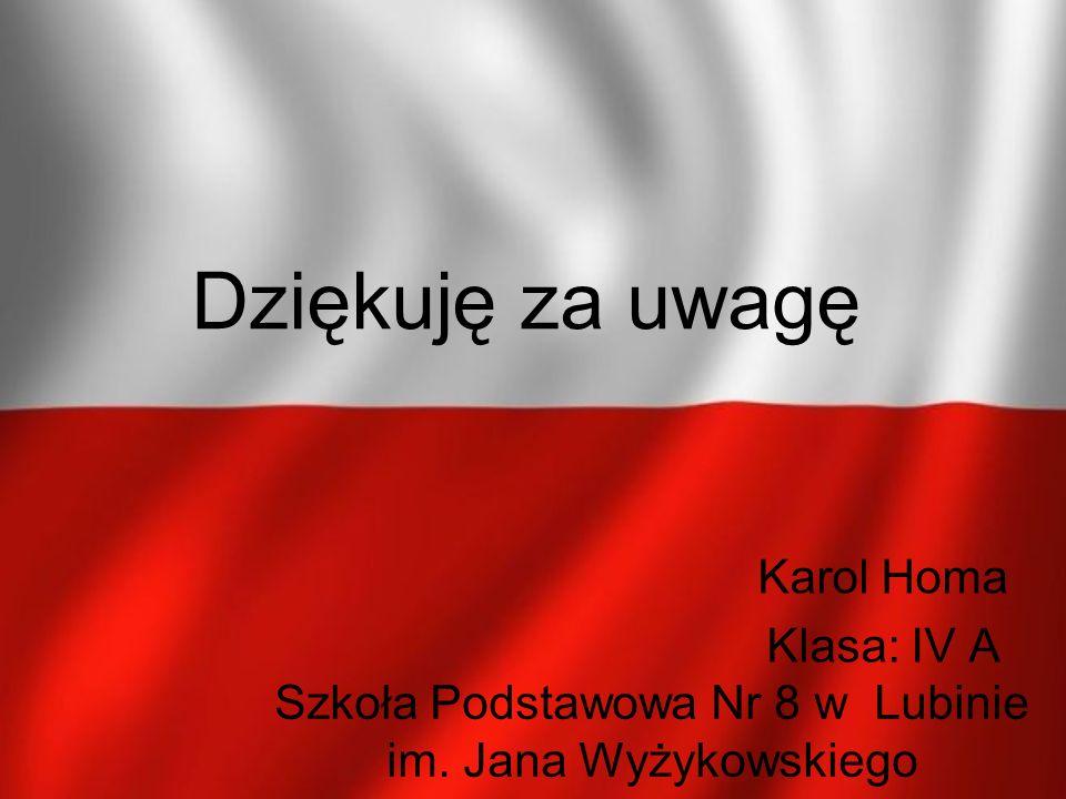 Dziękuję za uwagę Karol Homa Klasa: IV A Szkoła Podstawowa Nr 8 w Lubinie im. Jana Wyżykowskiego