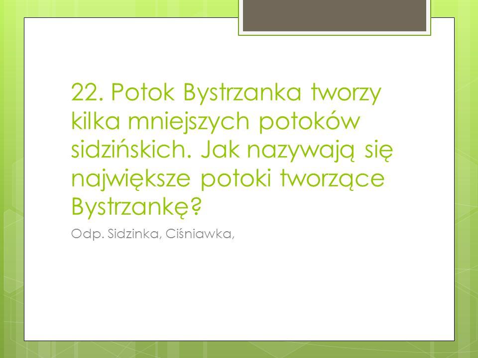 22.Potok Bystrzanka tworzy kilka mniejszych potoków sidzińskich.