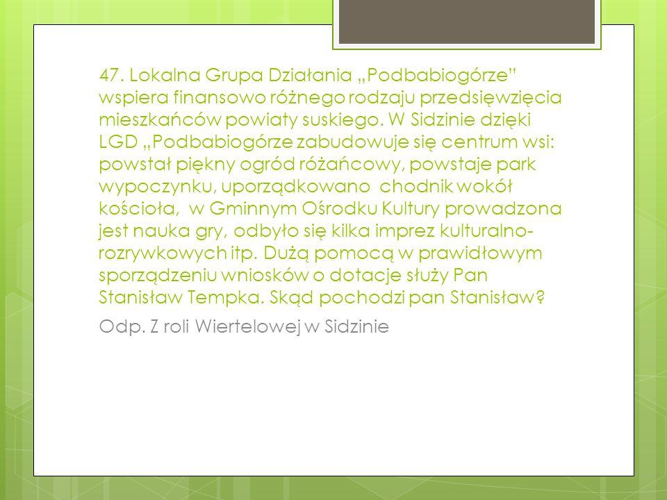 47. Lokalna Grupa Działania Podbabiogórze wspiera finansowo różnego rodzaju przedsięwzięcia mieszkańców powiaty suskiego. W Sidzinie dzięki LGD Podbab