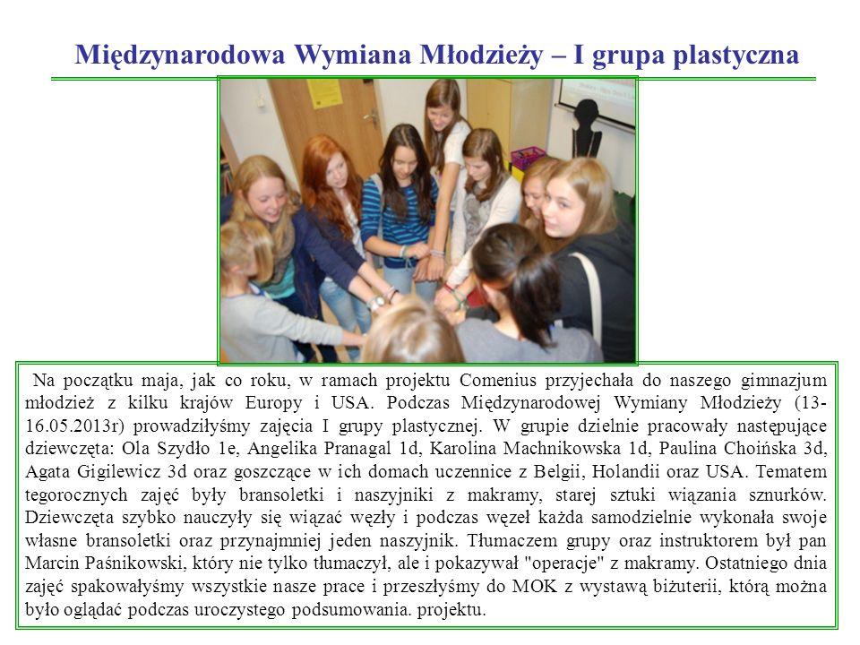 Międzynarodowa Wymiana Młodzieży – I grupa plastyczna Na początku maja, jak co roku, w ramach projektu Comenius przyjechała do naszego gimnazjum młodzież z kilku krajów Europy i USA.