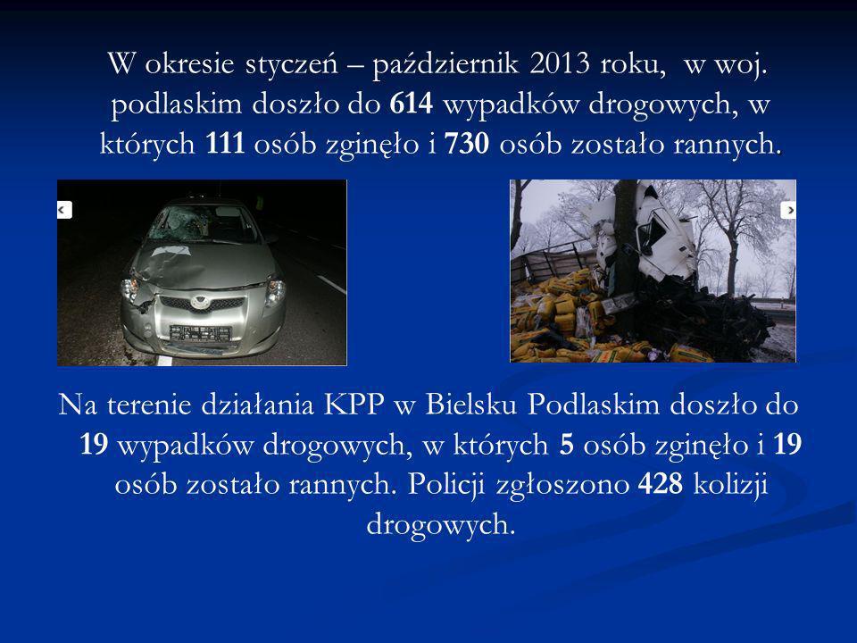 . W okresie styczeń – październik 2013 roku, w woj. podlaskim doszło do 614 wypadków drogowych, w których 111 osób zginęło i 730 osób zostało rannych.