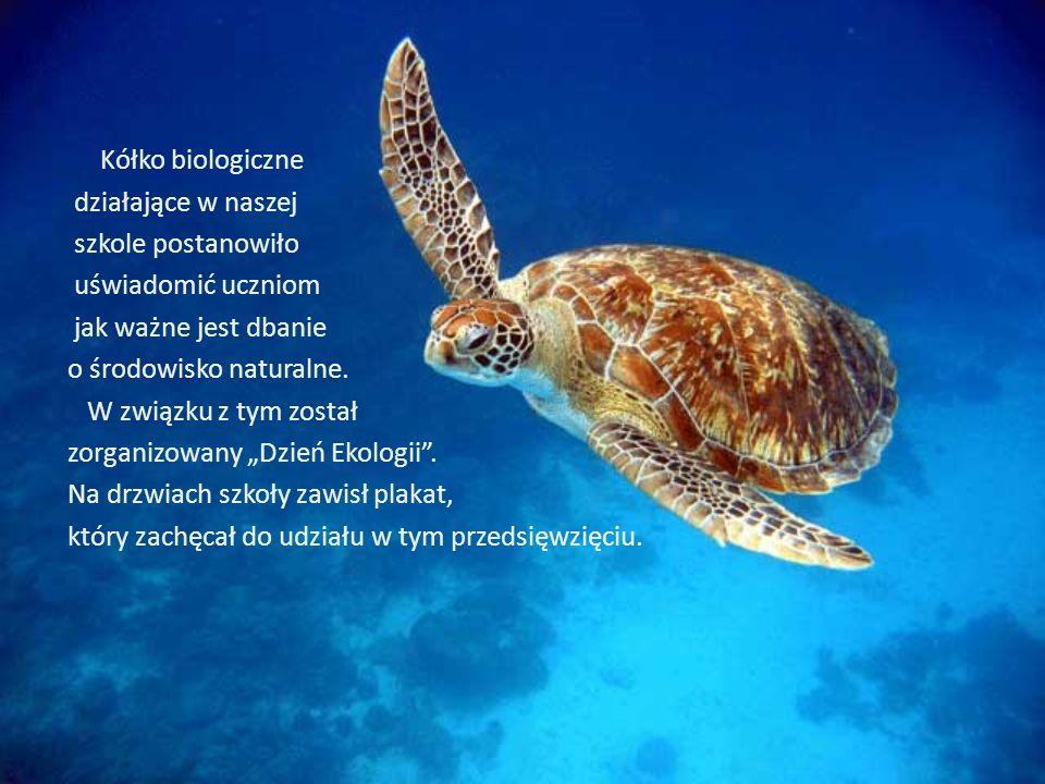 Luty 2012 Z okazji Dnia Ekologii sprzedawano znaczki zwalniające uczniów z niezapowiedzianych kartkówek i odpowiedzi ustnych.