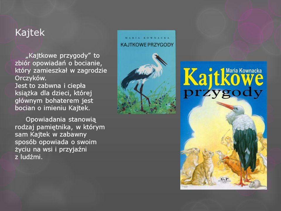Kajtek Kajtkowe przygody to zbiór opowiadań o bocianie, który zamieszkał w zagrodzie Orczyków. Jest to zabwna i ciepła książka dla dzieci, której głów