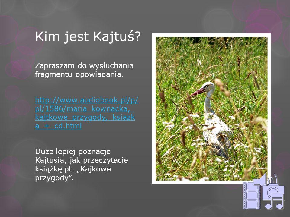 Kim jest Kajtuś? Zapraszam do wysłuchania fragmentu opowiadania. http://www.audiobook.pl/p/ pl/1586/maria_kownacka,_ kajtkowe_przygody,_ksiazk a_+_cd.