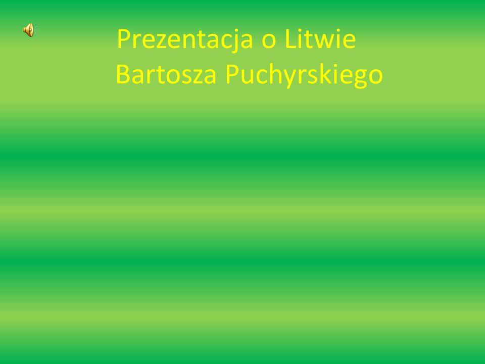 Prezentacja o Litwie Bartosza Puchyrskiego
