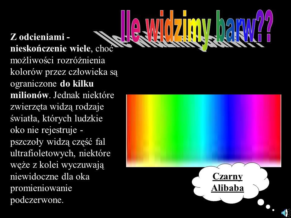Z odcieniami - nieskończenie wiele, choć możliwości rozróżnienia kolorów przez człowieka są ograniczone do kilku milionów. Jednak niektóre zwierzęta w