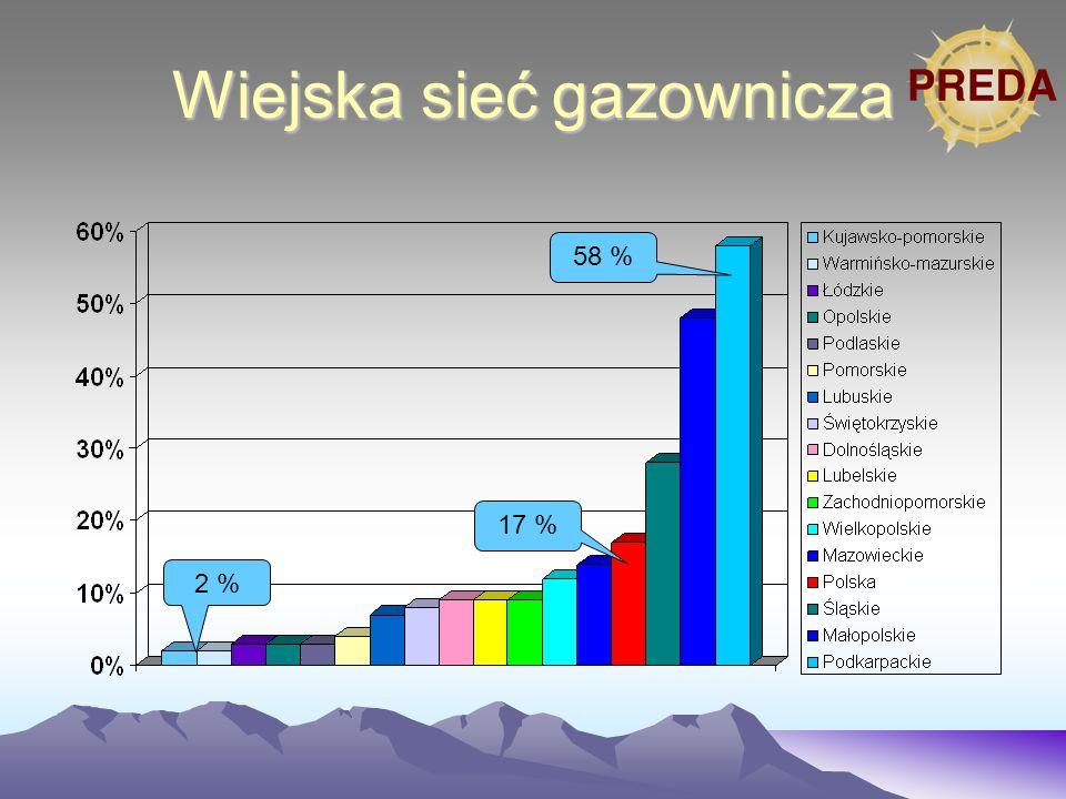 Wiejska sieć gazownicza 17 % 2 % 58 %