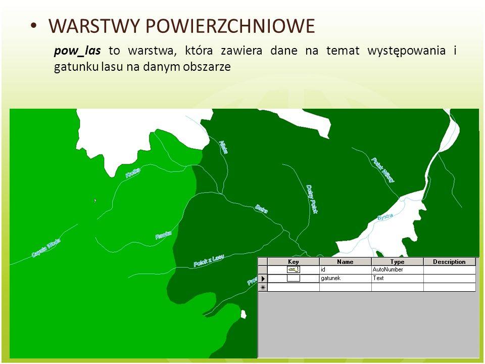 WARSTWY POWIERZCHNIOWE pow_las to warstwa, która zawiera dane na temat występowania i gatunku lasu na danym obszarze