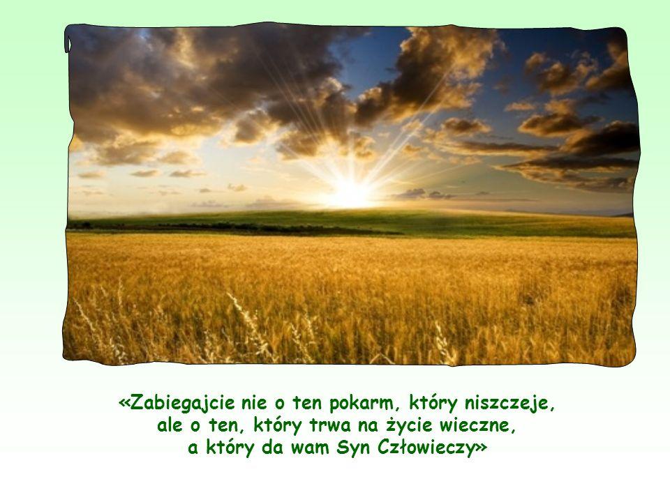 Starając się wprowadzić w życie Jego Słowa, człowiek dochodzi do pełni wiary w Niego, do zasmakowania w Jego Słowach, jakby smakował świeżego i pachnącego chleba.