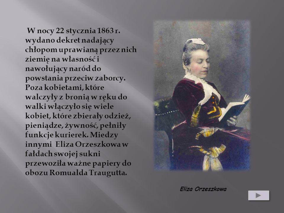 W nocy 22 stycznia 1863 r. wydano dekret nadający chłopom uprawianą przez nich ziemię na własność i nawołujący naród do powstania przeciw zaborcy. Poz