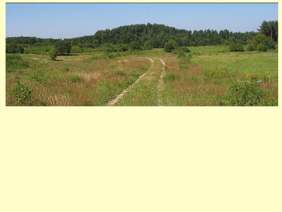 Znaczna ilość doświadczeń – na gruncie nauk przyrodniczych i architektury krajobrazu – istnieje w odniesieniu do oceny harmonii Model prawidłowego ekologicznie (harmonijnego) zagospodarowania erodowanej zlewni pojeziernej (Krzymuski, Niewiadomski, 1966)