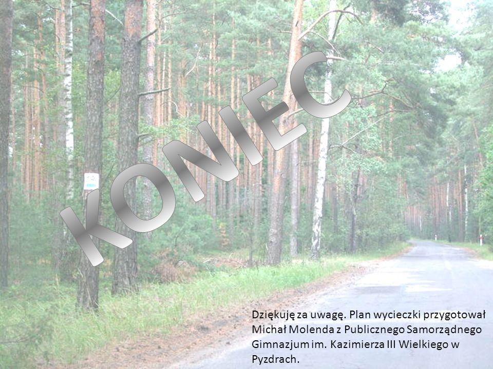 Dziękuję za uwagę. Plan wycieczki przygotował Michał Molenda z Publicznego Samorządnego Gimnazjum im. Kazimierza III Wielkiego w Pyzdrach.
