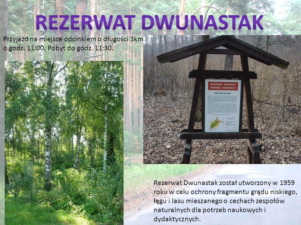 Rezerwat Dwunastak został utworzony w 1959 roku w celu ochrony fragmentu grądu niskiego, łęgu i lasu mieszanego o cechach zespołów naturalnych dla pot