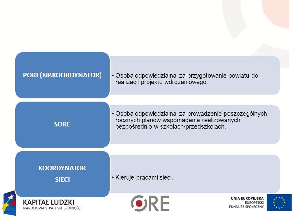 Osoba odpowiedzialna za przygotowanie powiatu do realizacji projektu wdrożeniowego.