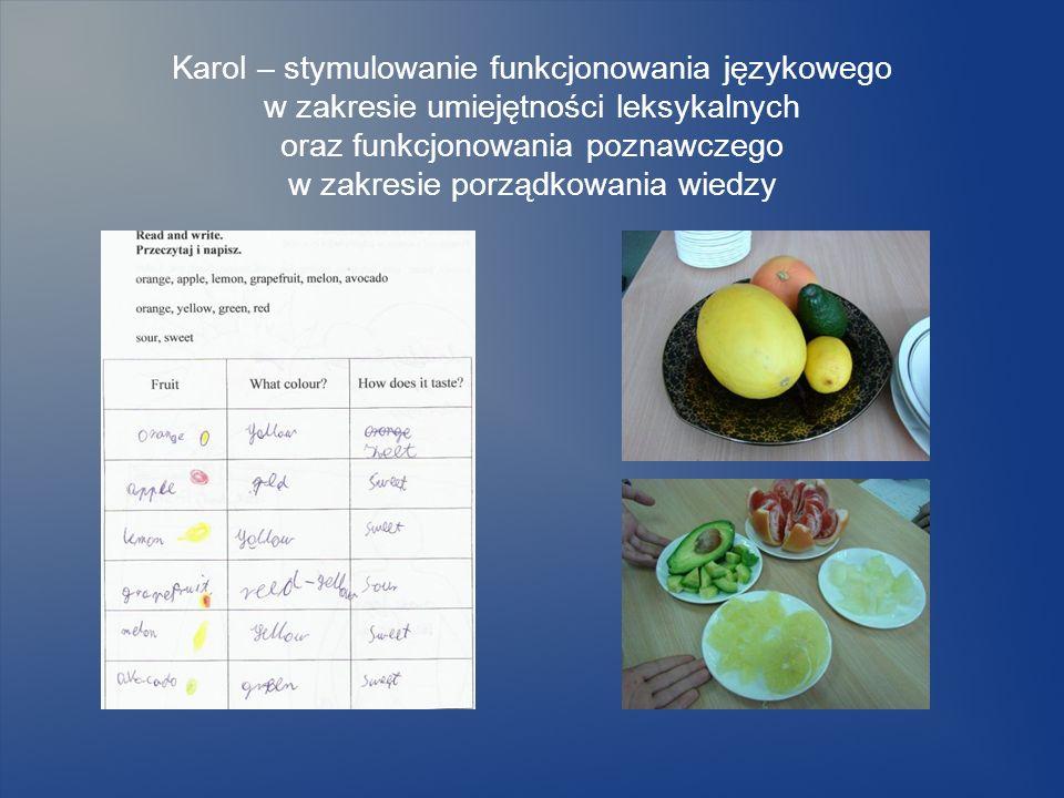 Karol – stymulowanie funkcjonowania językowego w zakresie umiejętności leksykalnych oraz funkcjonowania poznawczego w zakresie porządkowania wiedzy