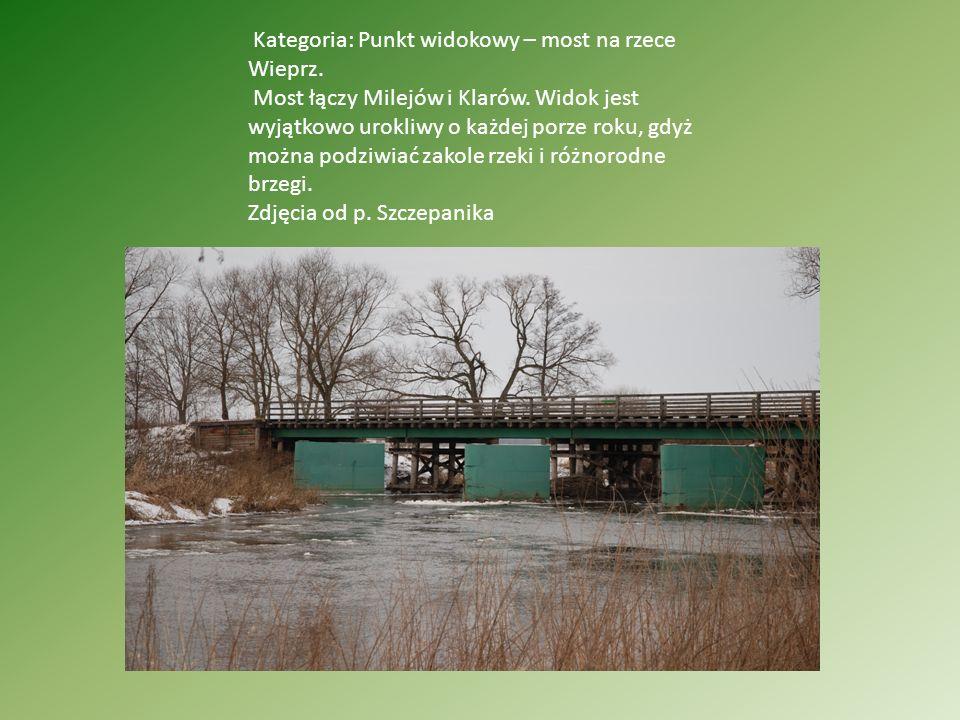 Kategoria: Punkt widokowy – most na rzece Wieprz. Most łączy Milejów i Klarów. Widok jest wyjątkowo urokliwy o każdej porze roku, gdyż można podziwiać