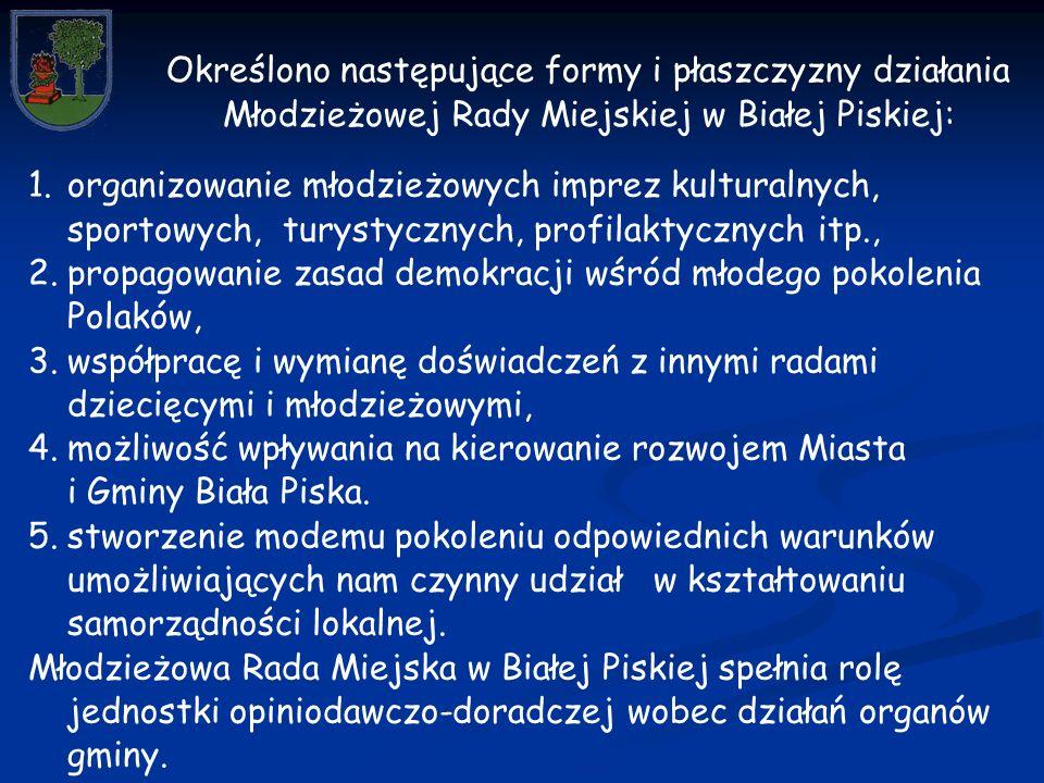 1.organizowanie młodzieżowych imprez kulturalnych, sportowych, turystycznych, profilaktycznych itp., 2.propagowanie zasad demokracji wśród młodego pokolenia Polaków, 3.współpracę i wymianę doświadczeń z innymi radami dziecięcymi i młodzieżowymi, 4.możliwość wpływania na kierowanie rozwojem Miasta i Gminy Biała Piska.