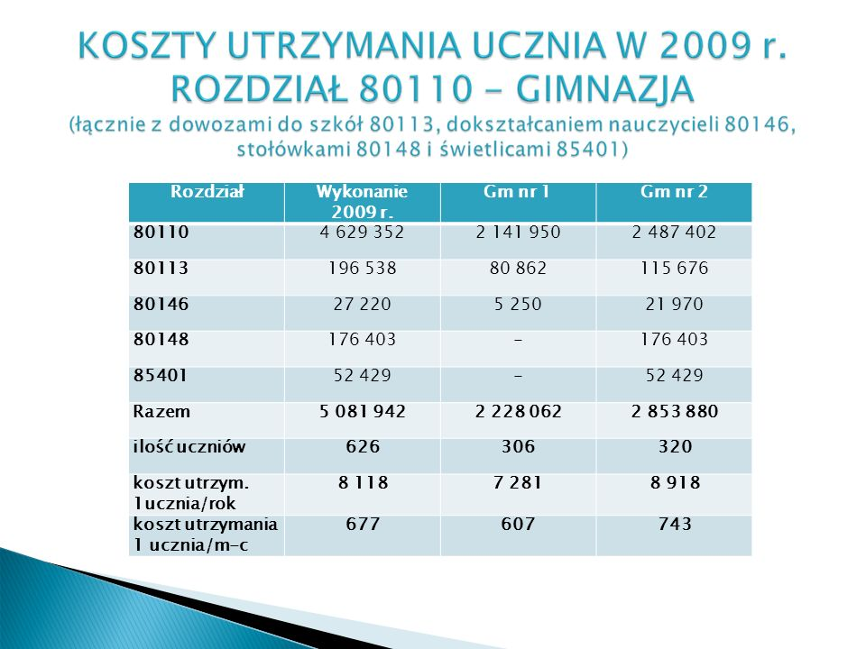 RozdziałWykonanie 2009 r.