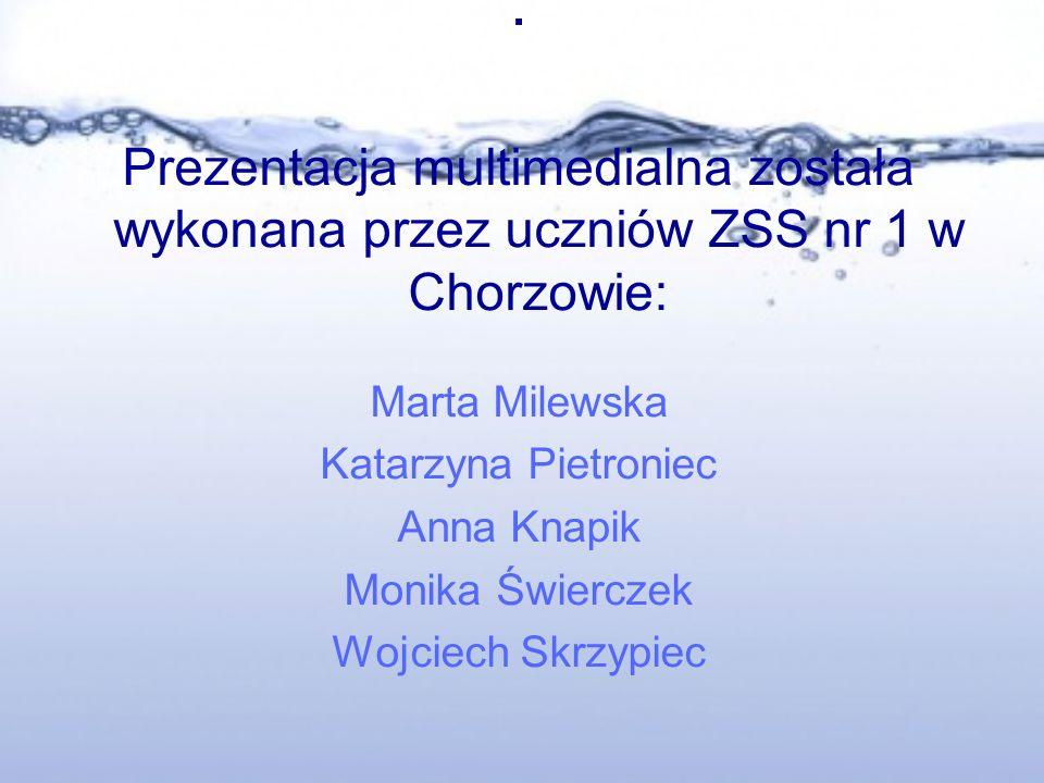 . Prezentacja multimedialna została wykonana przez uczniów ZSS nr 1 w Chorzowie: Marta Milewska Katarzyna Pietroniec Anna Knapik Monika Świerczek Wojciech Skrzypiec