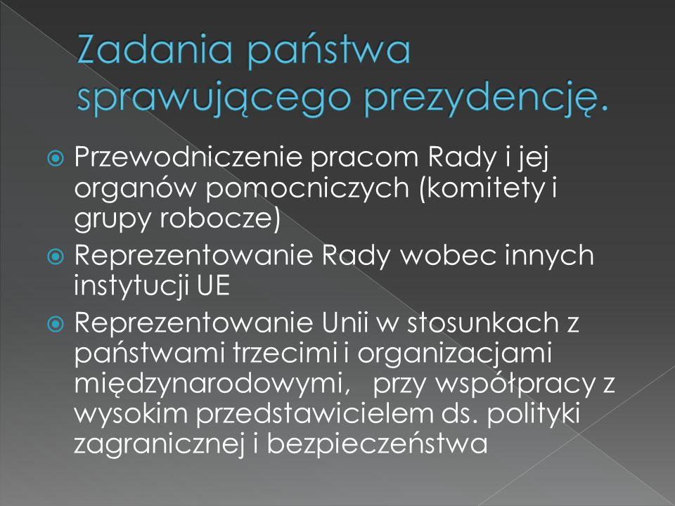 zakończenie negocjacji członkowskich z Chorwacją zakończenie negocjacji stowarzyszeniowych z Ukrainą rozwój Partnerstwa Wschodniego oraz polityki sąsiedztwa przyspieszenie negocjacji członkowskich z Turcją nadanie Serbii statusu kandydata i rozpoczęcie negocjacji członkowskich negocjacje budżetowe na lata 2014–2020 walka z nielegalną imigracją rozwój jednolitego rynku wspólna polityka energetyczna, wymiar bezpieczeństwa energetyki.