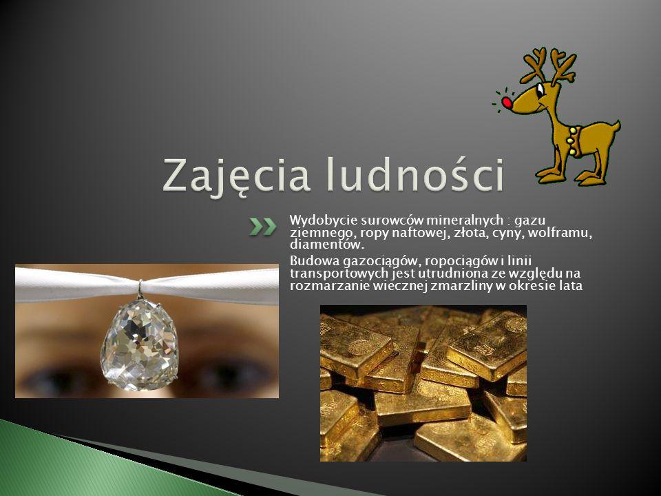 Wydobycie surowców mineralnych : gazu ziemnego, ropy naftowej, złota, cyny, wolframu, diamentów.