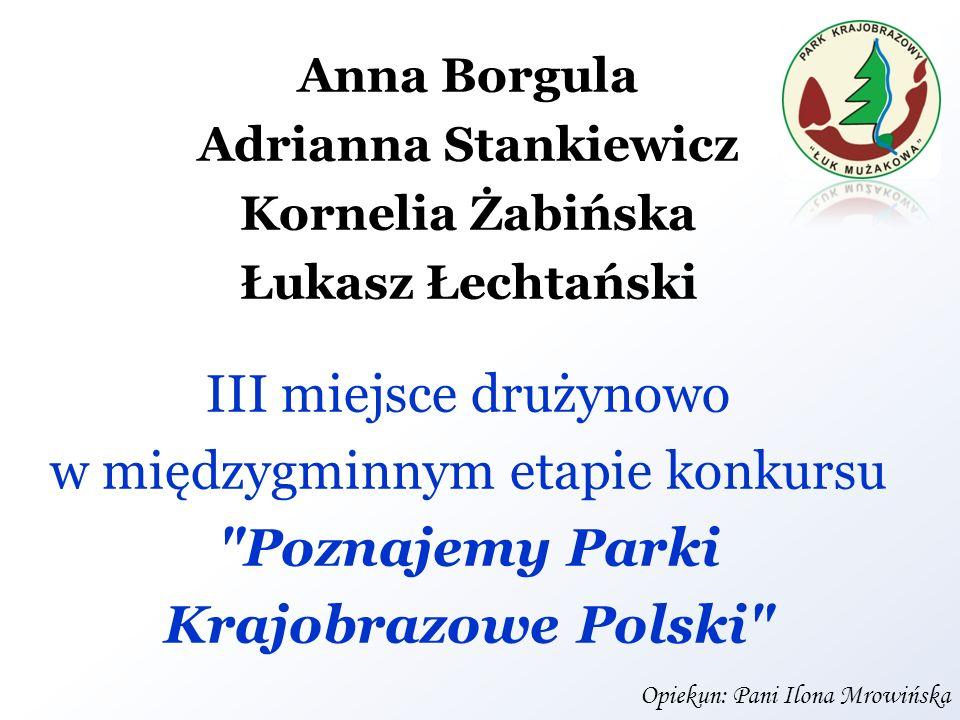Anna Borgula Adrianna Stankiewicz Kornelia Żabińska Łukasz Łechtański III miejsce drużynowo w międzygminnym etapie konkursu