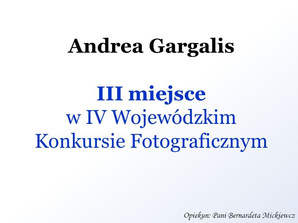 Andrea Gargalis III miejsce w IV Wojewódzkim Konkursie Fotograficznym Opiekun: Pani Bernardeta Mickiewcz