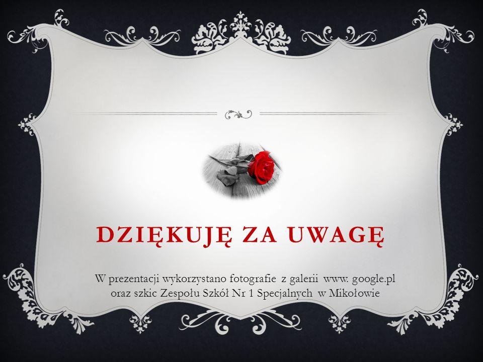 DZIĘKUJĘ ZA UWAGĘ W prezentacji wykorzystano fotografie z galerii www. google.pl oraz szkic Zespołu Szkół Nr 1 Specjalnych w Mikołowie