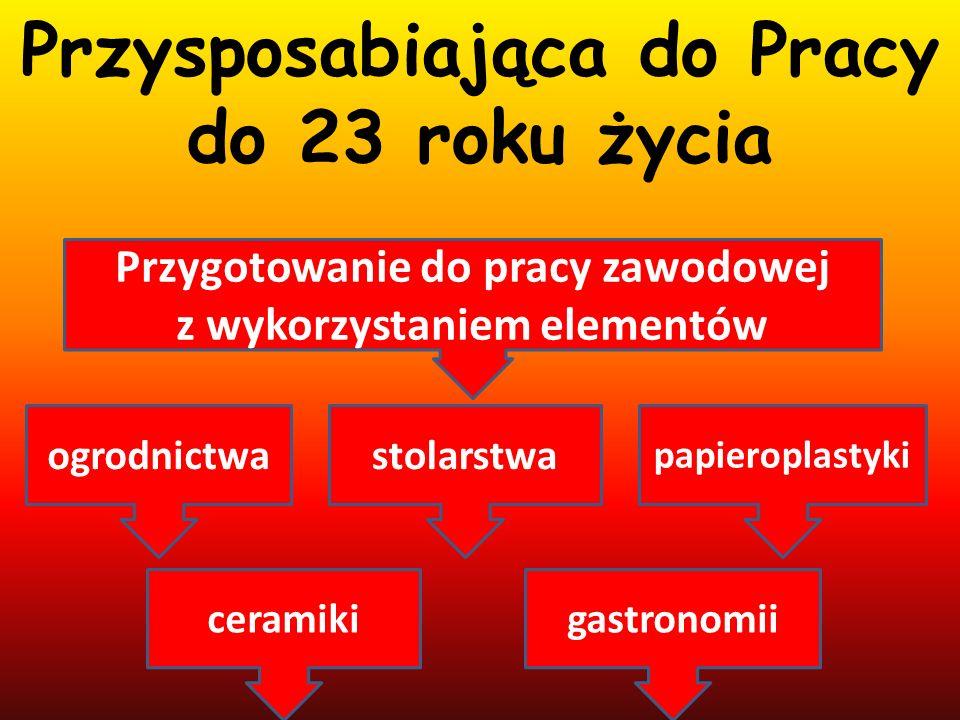 Specjalny O ś rodek Szkolno – Wychowawczy w K ą tach Wroc ł awskich ul.