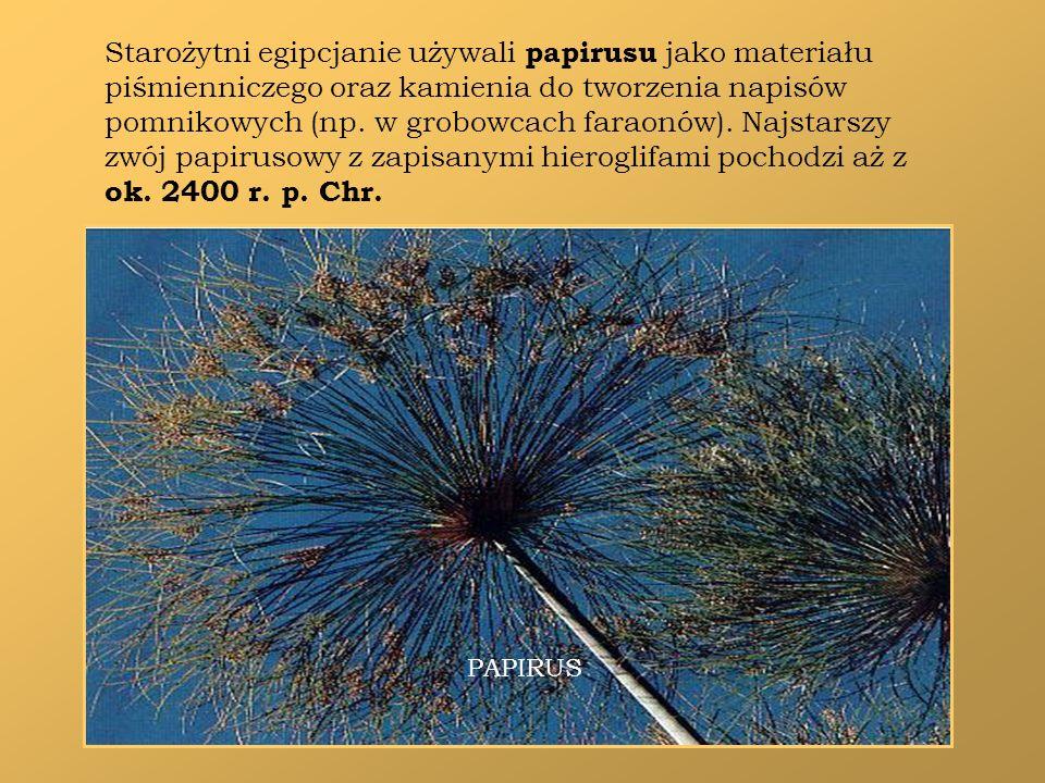 Starożytni egipcjanie używali papirusu jako materiału piśmienniczego oraz kamienia do tworzenia napisów pomnikowych (np. w grobowcach faraonów). Najst