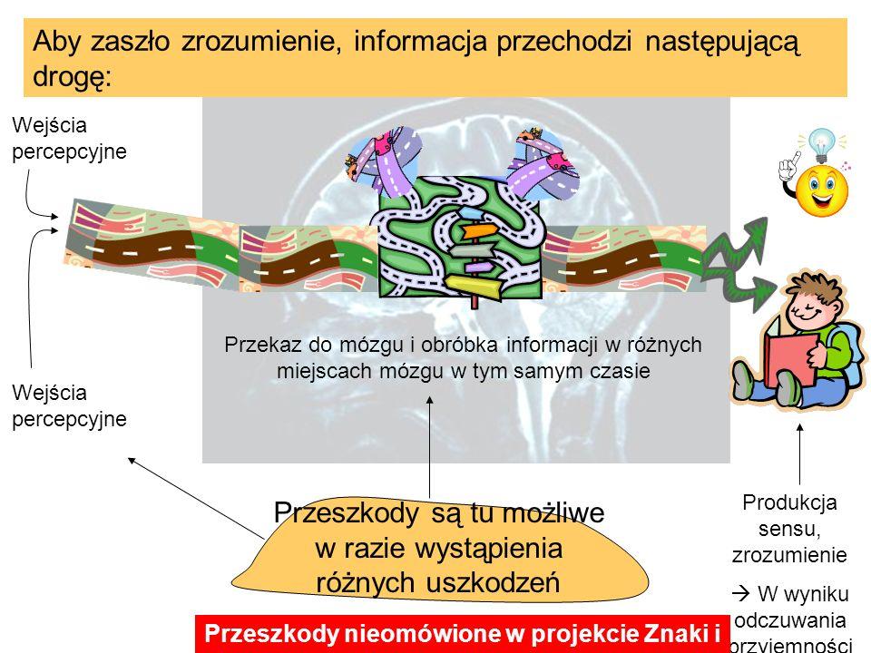 Aby zaszło zrozumienie, informacja przechodzi następującą drogę: Wejścia percepcyjne Przekaz do mózgu i obróbka informacji w różnych miejscach mózgu w