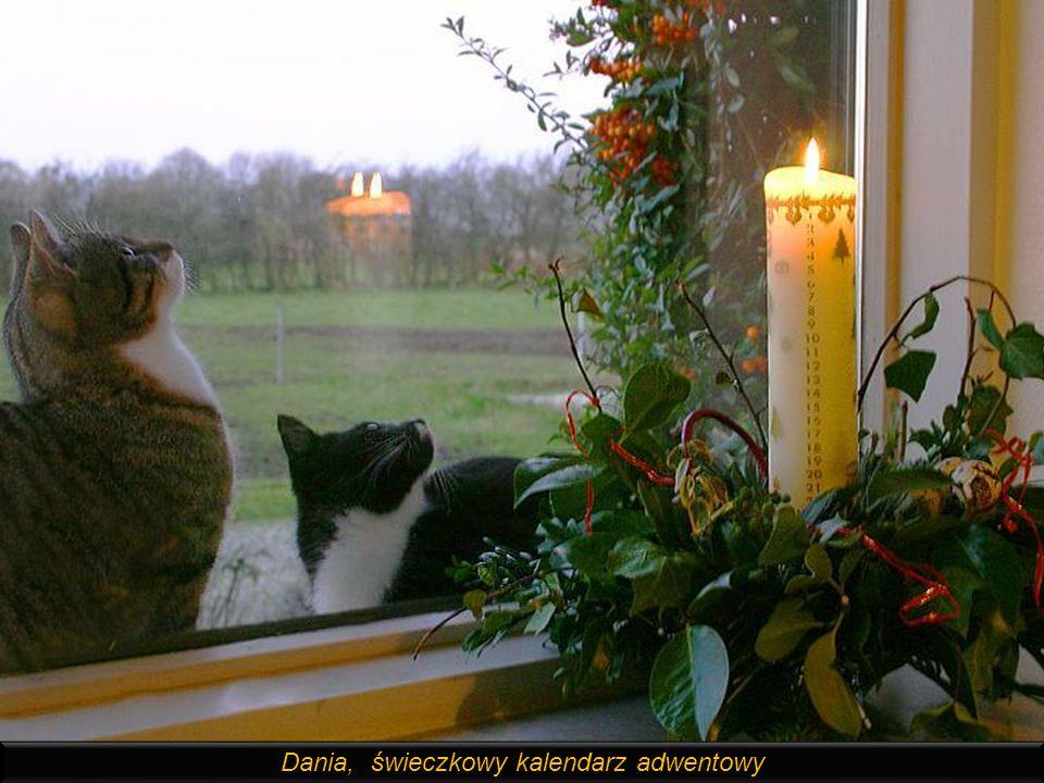 Himmeli, popularna w Finlandii i Szwecji dekoracja świąteczna ze słomek, podwieszana pod sufitem. Słoma symbolizuje sianko na którym leżał w stajence