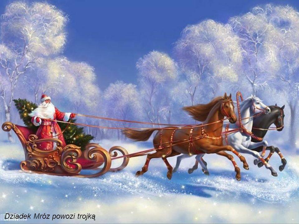 W Rosji Śnieżynka wraz z Dziadkiem Mrozem, swoim dziadkiem, rozwozi rosyjskim dzieciom bożonaro- dzeniowe prezenty według kalendarza juliańskiego 7 st
