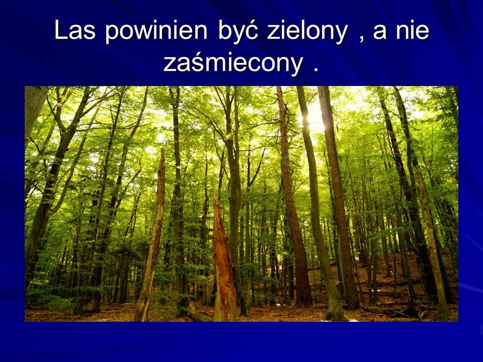 Las powinien być zielony, a nie zaśmiecony.