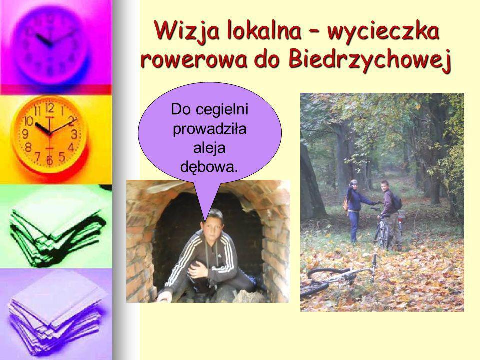 Wizja lokalna – wycieczka rowerowa do Biedrzychowej Do cegielni prowadziła aleja dębowa.