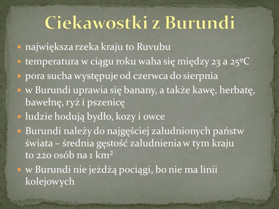 największa rzeka kraju to Ruvubu temperatura w ciągu roku waha się między 23 a 25ºC pora sucha występuje od czerwca do sierpnia w Burundi uprawia się