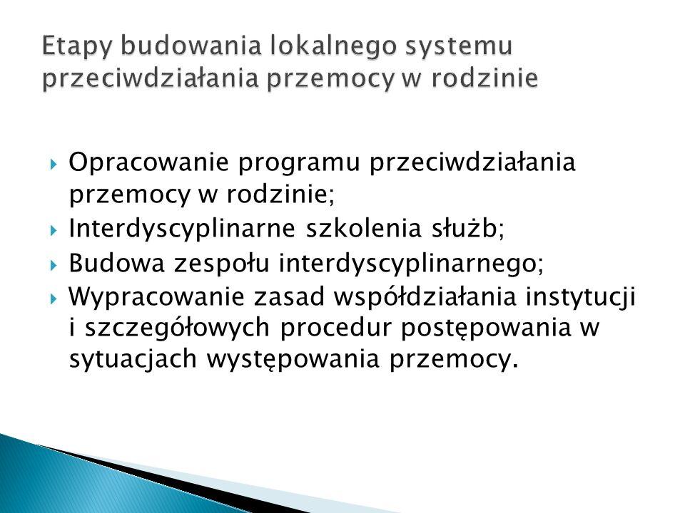 Opracowanie programu przeciwdziałania przemocy w rodzinie ; Interdyscyplinarne szkolenia służb ; Budowa zespołu interdyscyplinarnego ; Wypracowanie za