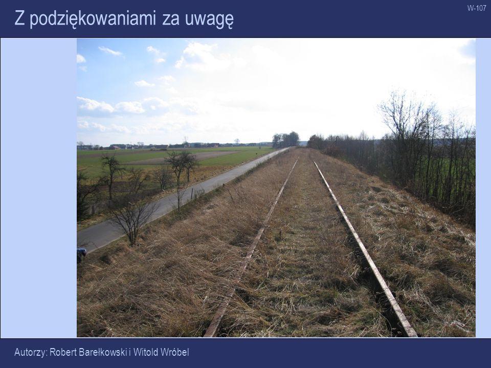W-107 Z podziękowaniami za uwagę Autorzy: Robert Barełkowski i Witold Wróbel