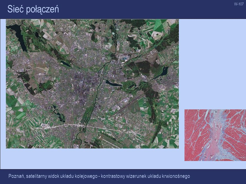 W-107 Sieć połączeń Poznań, satelitarny widok układu kolejowego - kontrastowy wizerunek układu krwionośnego