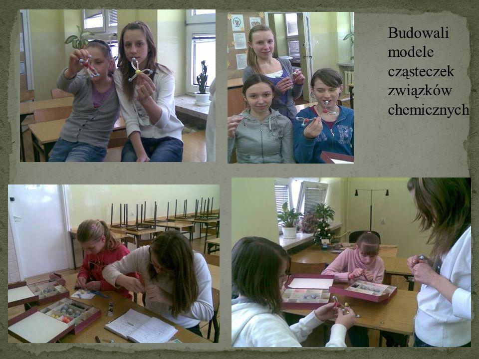 Budowali modele cząsteczek związków chemicznych