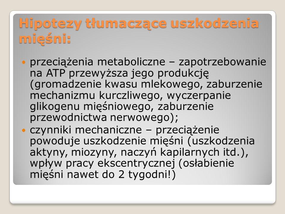 Hipotezy tłumaczące uszkodzenia mięśni: przeciążenia metaboliczne – zapotrzebowanie na ATP przewyższa jego produkcję (gromadzenie kwasu mlekowego, zab