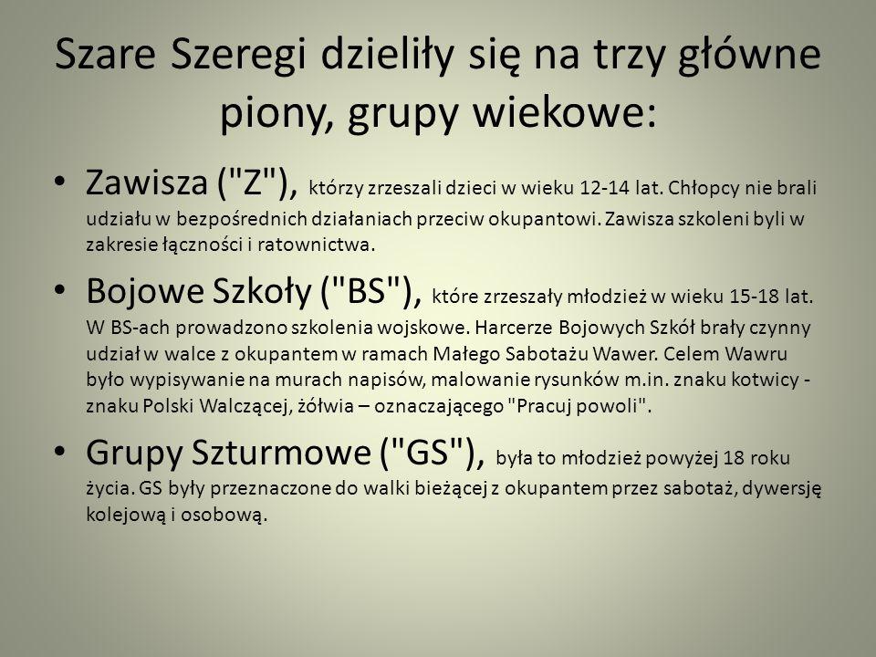 Szare Szeregi dzieliły się na trzy główne piony, grupy wiekowe: Zawisza (