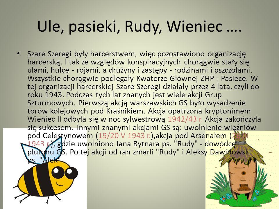 Maciej Aleksy Dawidowski Alek Jan Bytnar Rudy