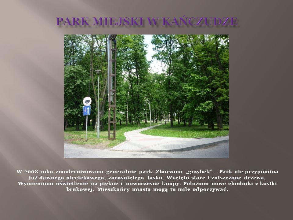 W 2008 roku zmodernizowano generalnie park. Zburzono grzybek. Park nie przypomina już dawnego nieciekawego, zarośniętego lasku. Wycięto stare i zniszc