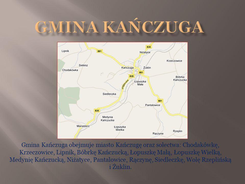 Gmina Kańczuga obejmuje miasto Kańczugę oraz sołectwa: Chodakówkę, Krzeczowice, Lipnik, Bóbrkę Kańczucką, Łopuszkę Małą, Łopuszkę Wielką, Medynię Kańc