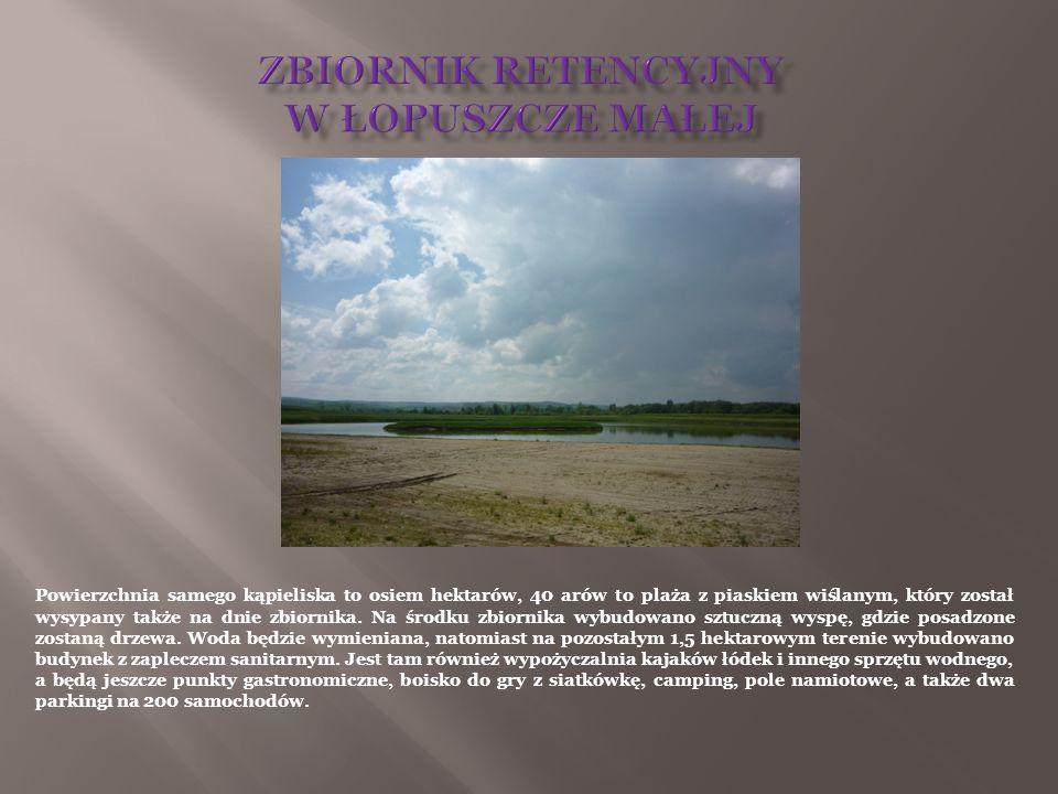 Powierzchnia samego kąpieliska to osiem hektarów, 40 arów to plaża z piaskiem wiślanym, który został wysypany także na dnie zbiornika. Na środku zbior