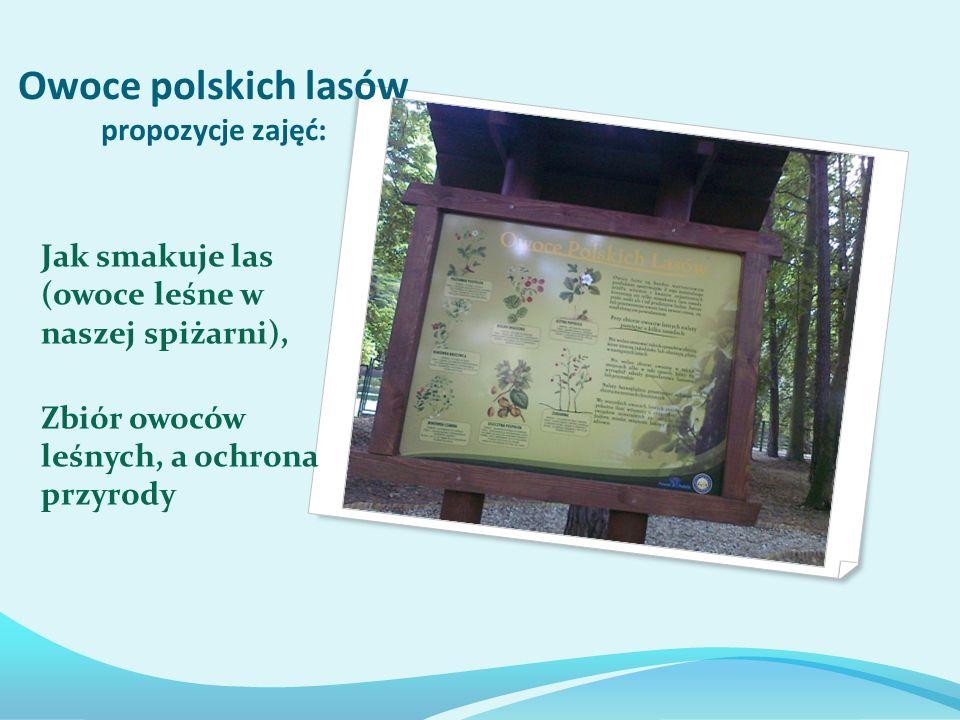 Owoce polskich lasów propozycje zajęć: Jak smakuje las (owoce leśne w naszej spiżarni), Zbiór owoców leśnych, a ochrona przyrody